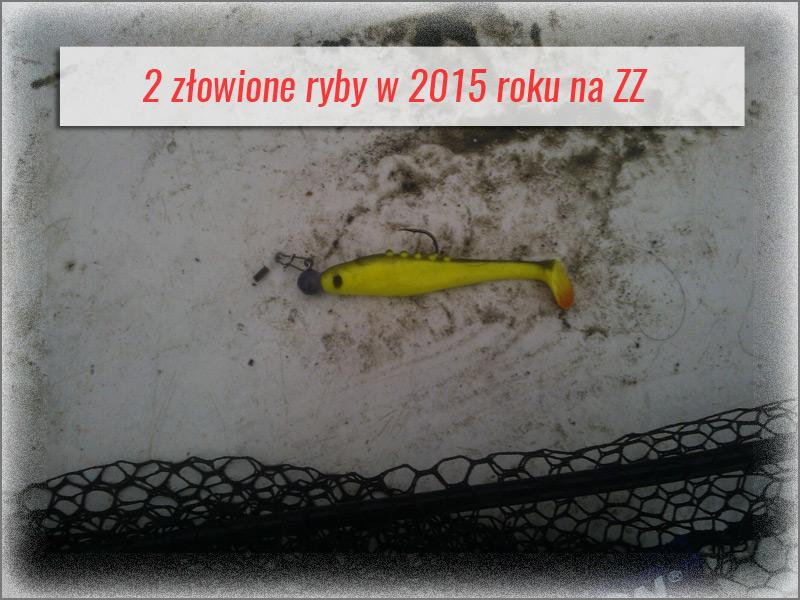 Lunatic 8,5 - żółty